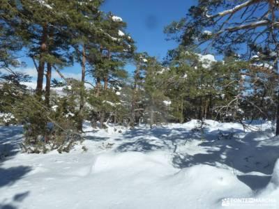 Ladera Mojonavalle-Bosques Canencia; la barranca madrid fuenfria fotos de cascadas los tilos la palm
